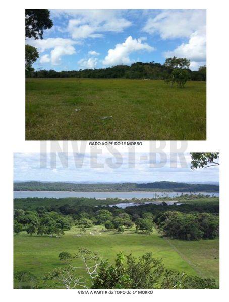 Fazenda em Itaparica, Bahia - BA91001 - 4