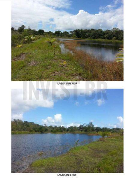 Fazenda em Itaparica, Bahia - BA91001 - 5