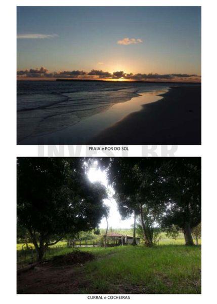 Fazenda em Itaparica, Bahia - BA91001 - 6