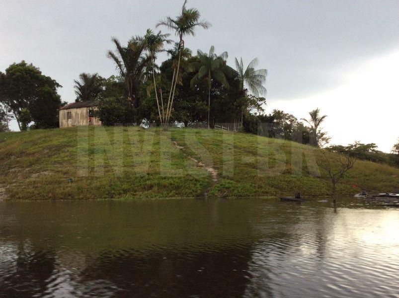 Área em Careiro, Amazonas - AM53001 - 1