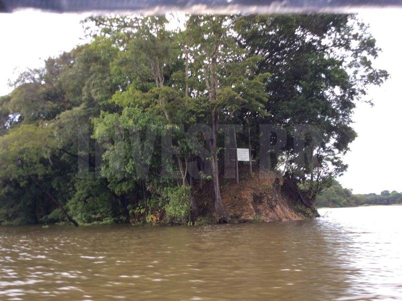 Área em Careiro, Amazonas - AM53001 - 15