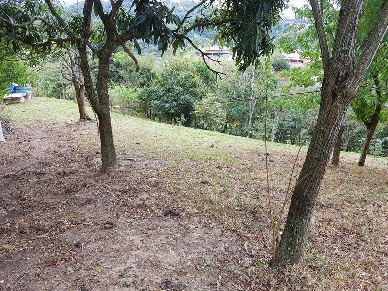 Sítio com 40,000.00 m² com lago, pasto e área para plantação. - stary - 17