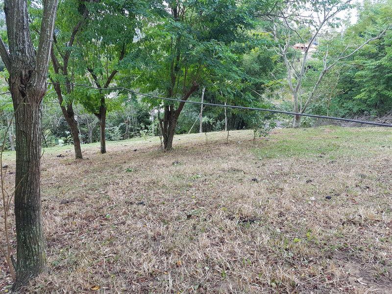 Sítio com 40,000.00 m² com lago, pasto e área para plantação. - stary - 18