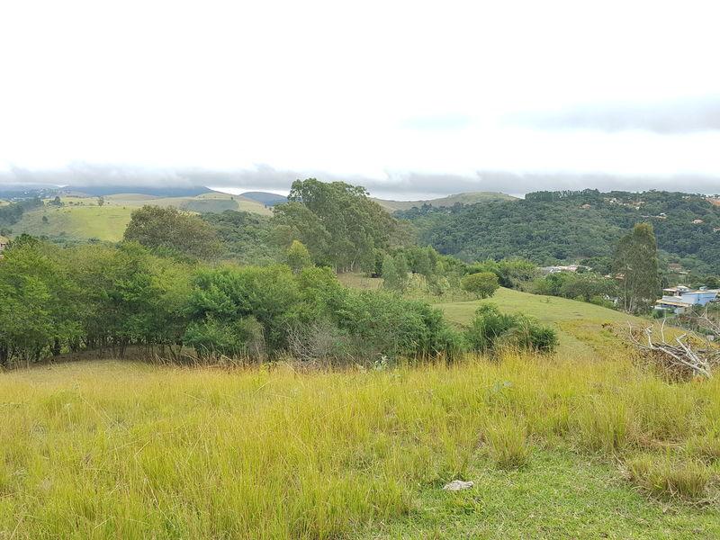 Sítio com 40,000.00 m² com lago, pasto e área para plantação. - stary - 29