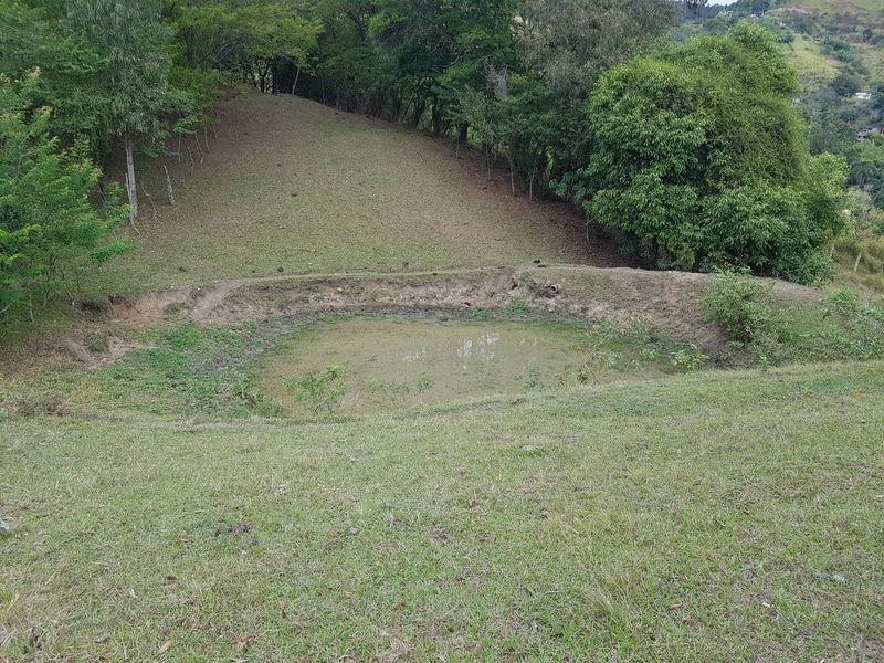 Sítio com 40,000.00 m² com lago, pasto e área para plantação. - stary - 32