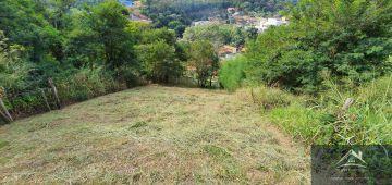 Casa 3 quartos à venda Paty do Alferes, Miguel Pereira - R$ 550.000 - csne550 - 31