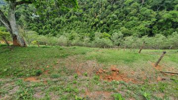 Terreno 442m² à venda Morro Azul, Engenheiro Paulo de Frontin - R$ 45.000 - trmr45 - 2