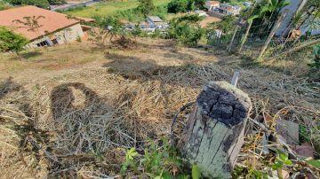 Terreno 980m² à venda Arcozelo, Paty do Alferes - R$ 55.000 - trar55 - 4