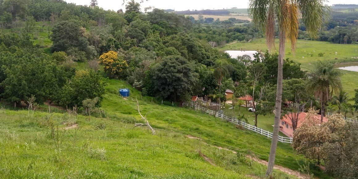 Sítio à venda Baixadão, Santa Maria da Serra - R$ 6.000.000 - ST002 - 5