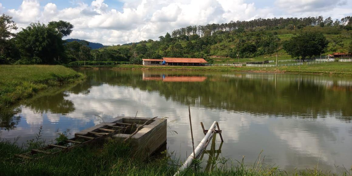 Sítio à venda Baixadão, Santa Maria da Serra - R$ 6.000.000 - ST002 - 31