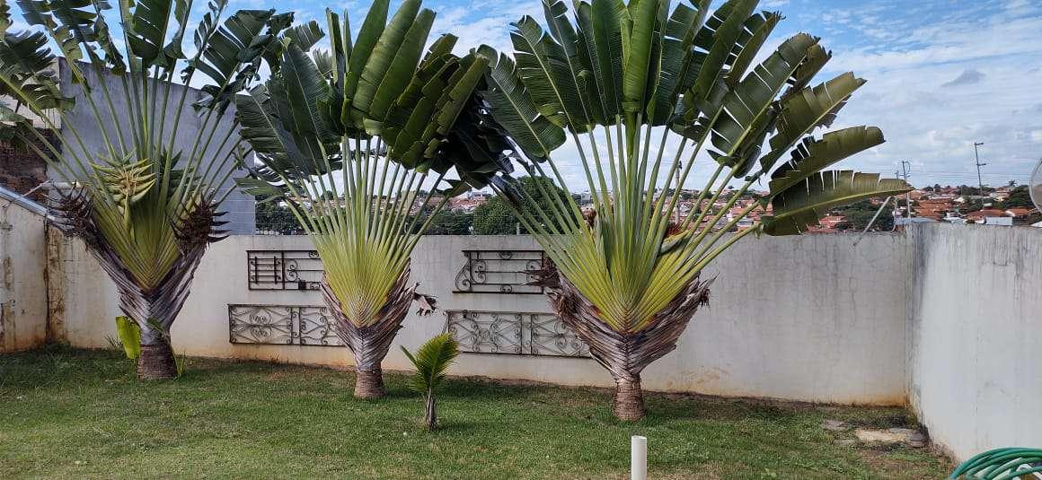 Casa 4 quartos à venda Jardim Itália, São Pedro - R$ 420.000 - CS092 - 3