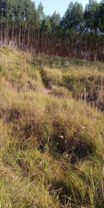 Sítio à venda Zona Rural, Águas de São Pedro - R$ 600.000 - ST005 - 23