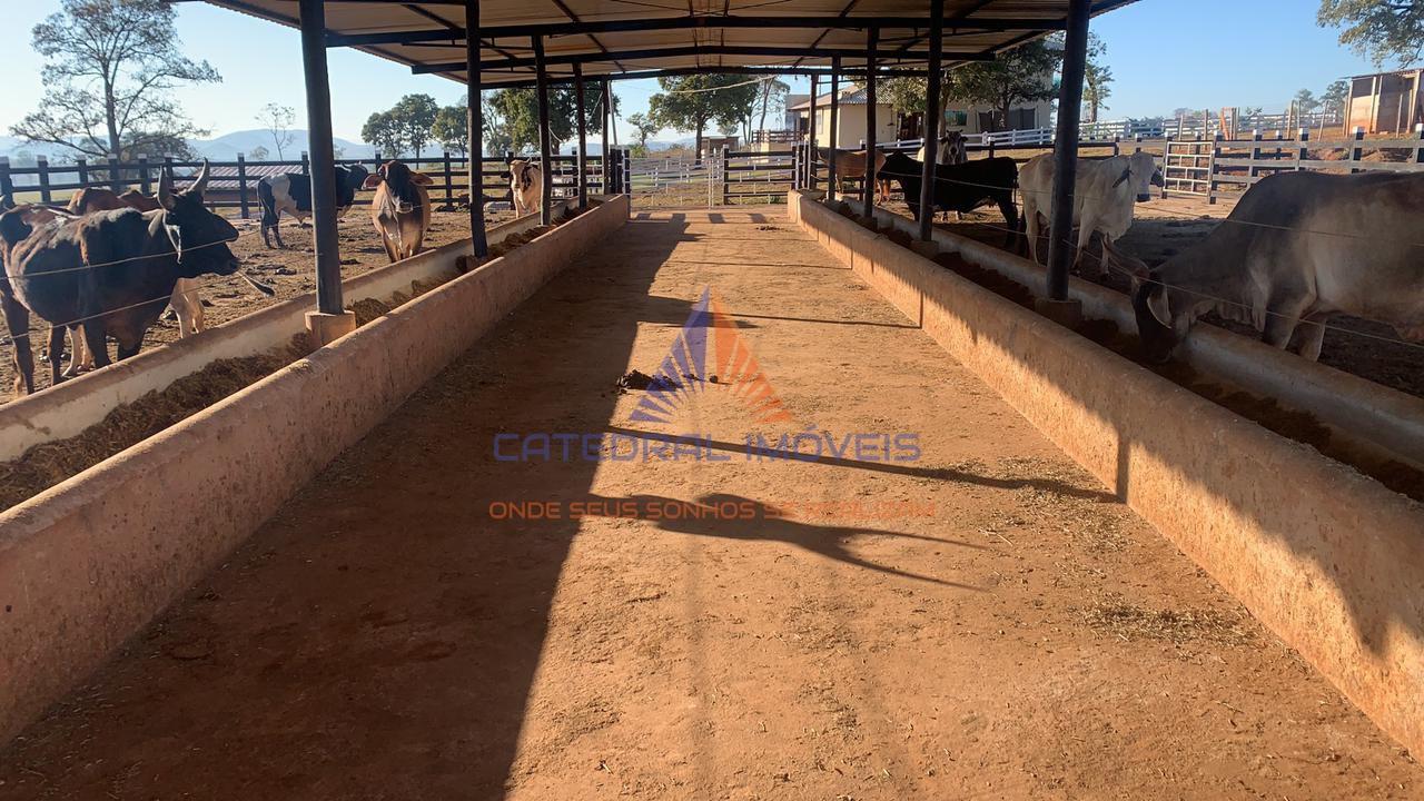 Fazenda 14000m² à venda - 001 - 19