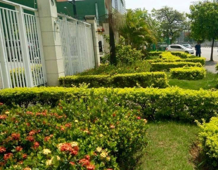 Apartamento Avenida Nossa Senhora do Ó,Limão, São Paulo, SP Para Alugar, 2 Quartos, 50m² - LOCACAO0034 - 20