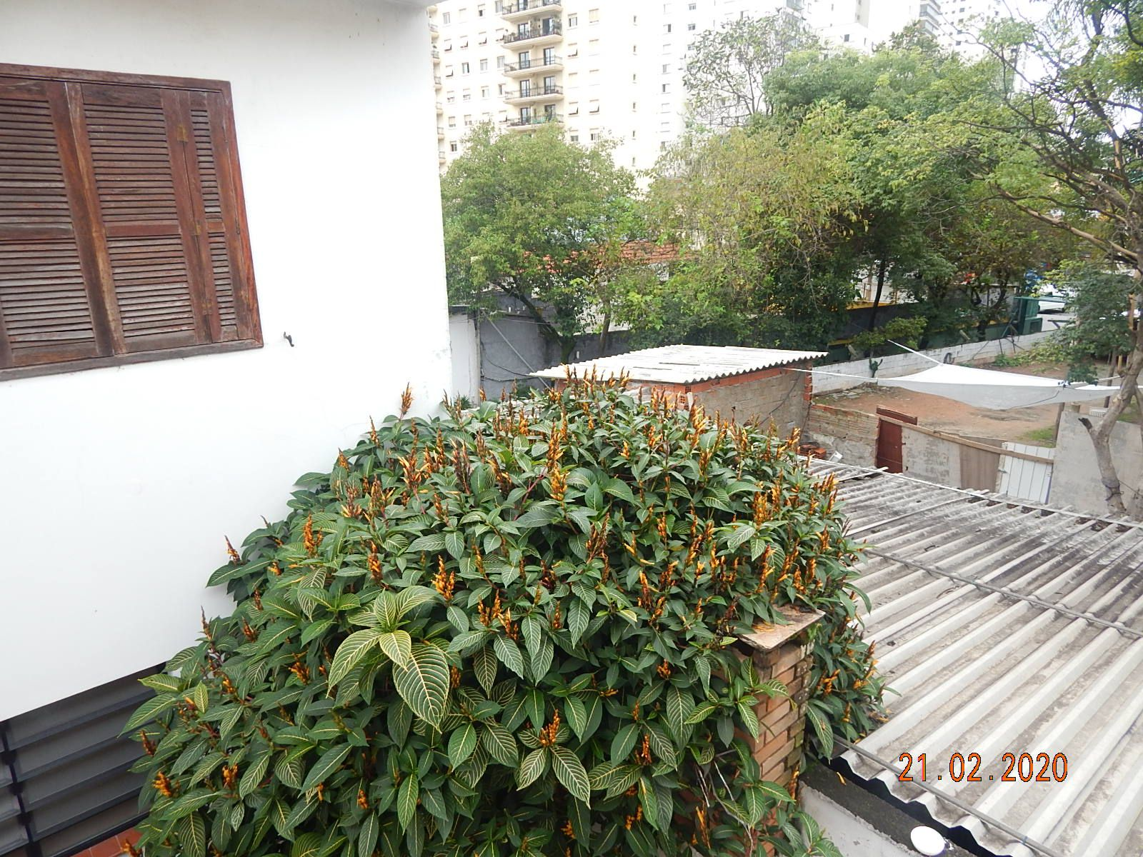 Casa Água Branca,São Paulo,SP À Venda,4 Quartos,400m² - VENDA0001CASA - 20