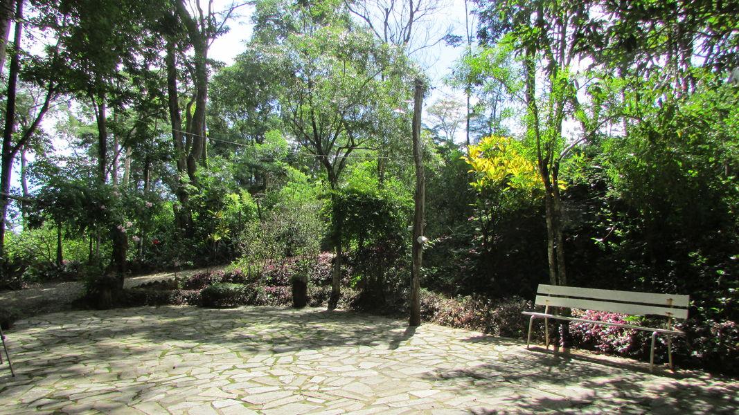 Imóvel, para Venda, Sítio, Santo Antônio da Barra, Pedro Leopoldo, MG - VST005 - 5