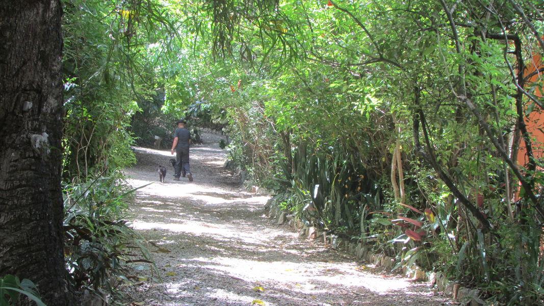 Imóvel, para Venda, Sítio, Santo Antônio da Barra, Pedro Leopoldo, MG - VST005 - 49