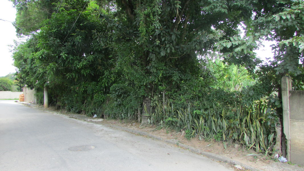 Imóvel, para Venda, Sítio, Santo Antônio da Barra, Pedro Leopoldo, MG - VST005 - 55