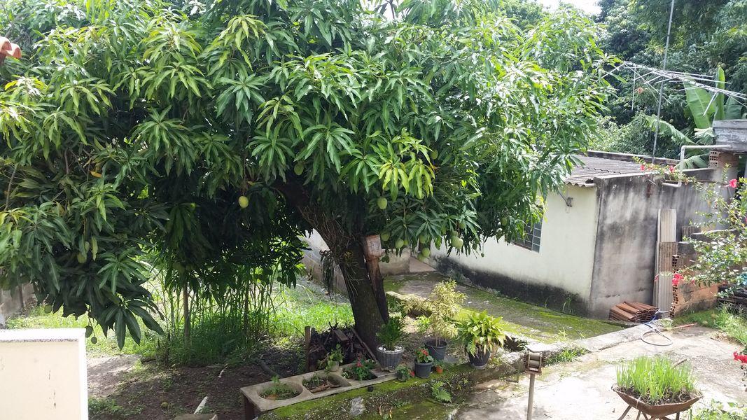 Casa, À Venda, Lagoa de Santo Antônio, Pedro Leopoldo, MG - VCS067 - 3