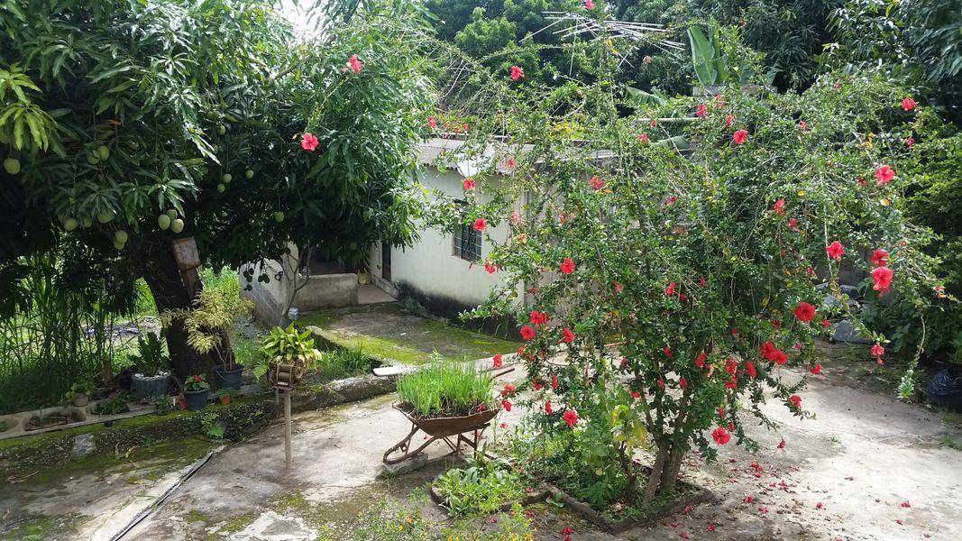 Casa, À Venda, Lagoa de Santo Antônio, Pedro Leopoldo, MG - VCS067 - 4