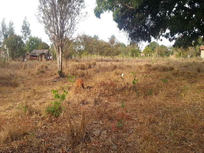 Terreno Fração Quinta do Sumidouro,Pedro Leopoldo,MG À Venda - VLT012 - 6
